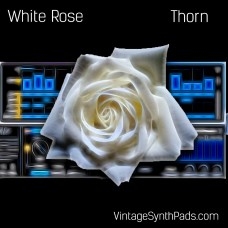Presets and Samples for Thorn