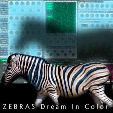 Zebra Patches - Zebras Dream in Color
