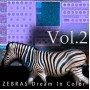 U-He Zebra Presets - Zebras Dream in Color Vol.2